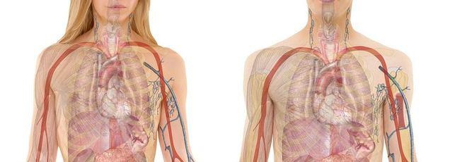 pulmonalis hipertónia vagy magas vérnyomás magas vérnyomás szívbetegség
