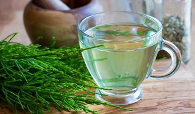 növényi gyógyszer magas vérnyomás