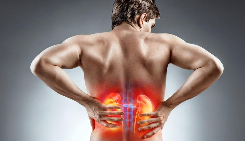 magas vérnyomás és mi a vese vibroakusztikus terápia)