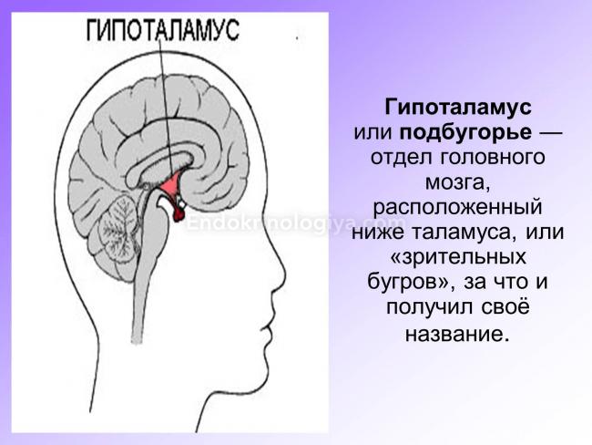 Hipofízis adenómák tünetei és kezelése