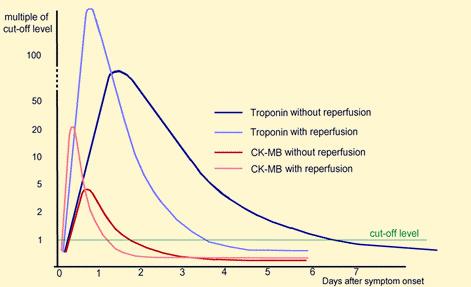 a vizelethajtó előnyei a magas vérnyomás esetén)