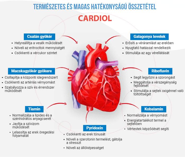 hogyan lehet megerősíteni a magas vérnyomásban szenvedő erek falát hogyan kezeljük az 1-2 fokozatú magas vérnyomást