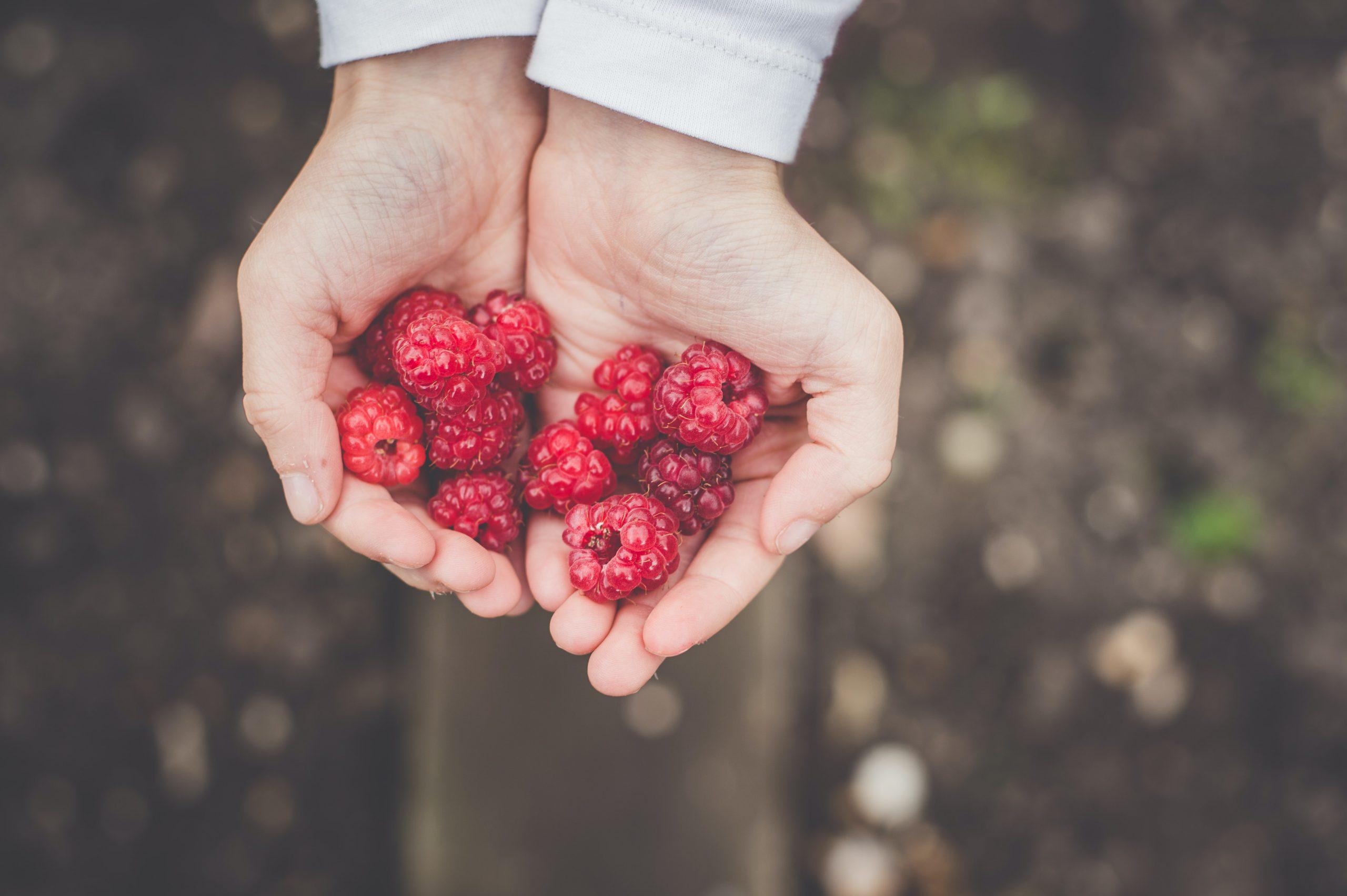 a legegészségesebb ételek a magas vérnyomás ellen terápiás torna magas vérnyomás esetén