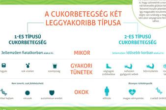 elhízás diabetes mellitus magas vérnyomás)