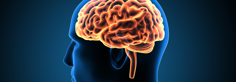 agy és magas vérnyomás)