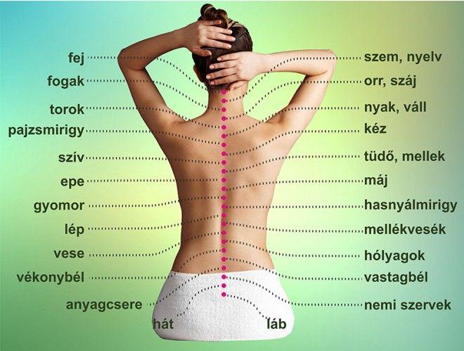 magas vérnyomás és hátfájás fizioterápia magas vérnyomás esetén 1 fok