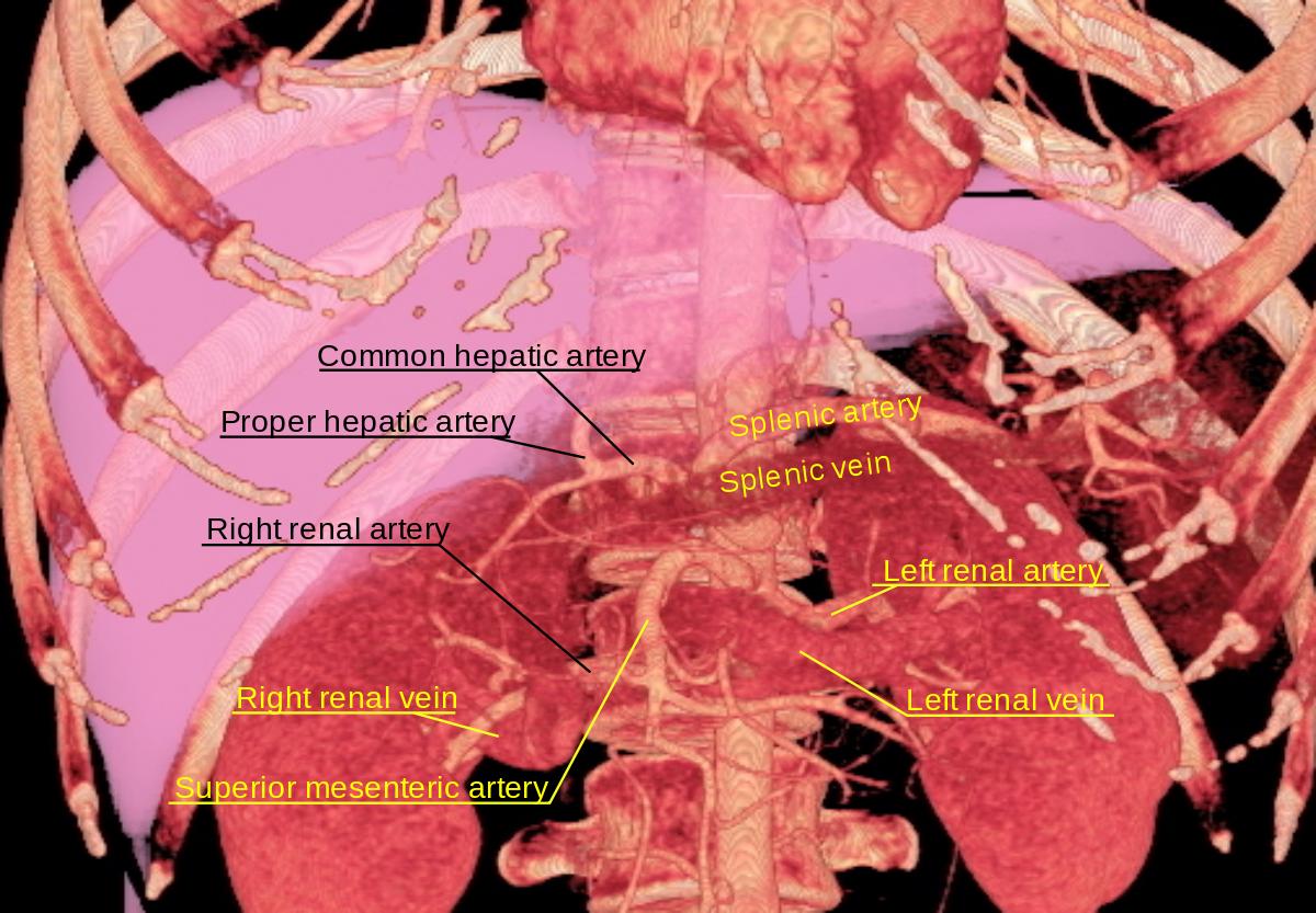 nefrogén hipertónia mkb 10)