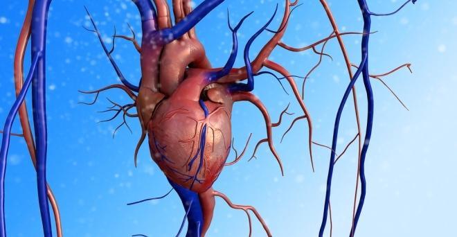 idegek és magas vérnyomás