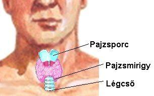 oka lehet a pajzsmirigy hipertóniája)
