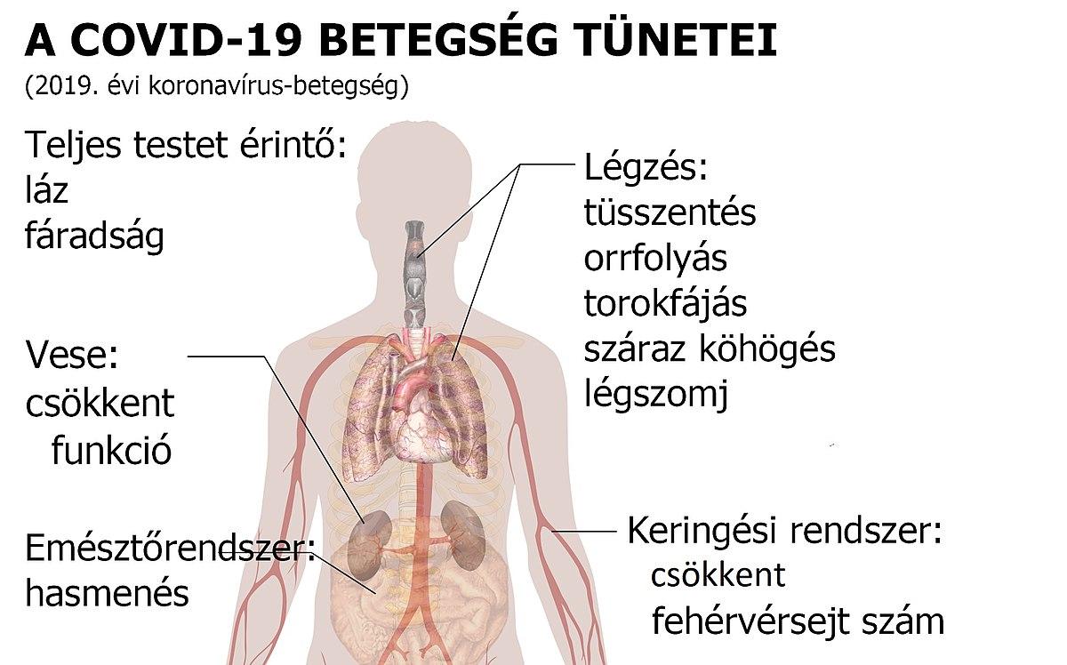 Hepatitis C tünetei és kezelése