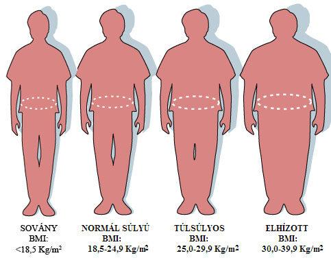 menü egy hétig magas vérnyomás elhízással