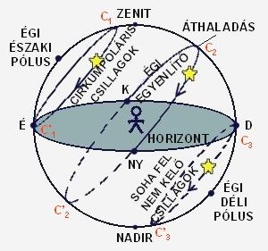 hipertóniás csillagok