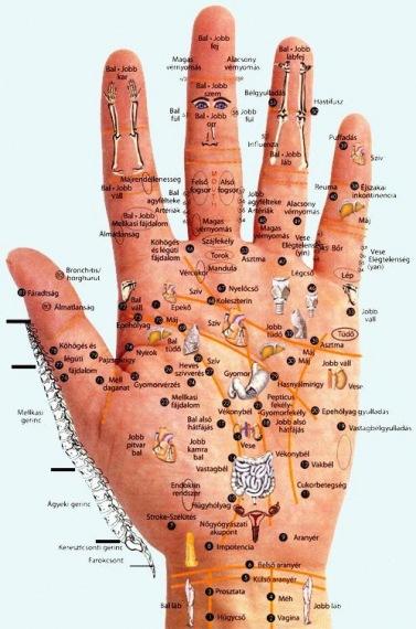 magas vérnyomás bal és jobb kéz)