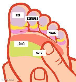 Ájurvéda a magas vérnyomás kezelésére)