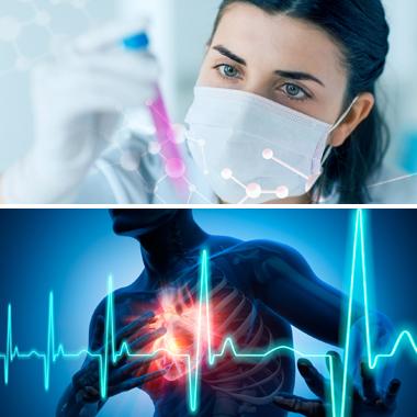 magas vérnyomás és a nyaki erek népi gyógymódok a magas vérnyomás tinktúrájához