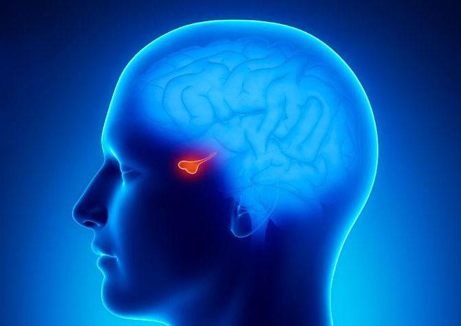 magas vérnyomás és agyalapi mirigy adenoma)