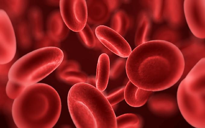 Mégsem véd a mérsékelt alkoholfogyasztás a magas vérnyomástól