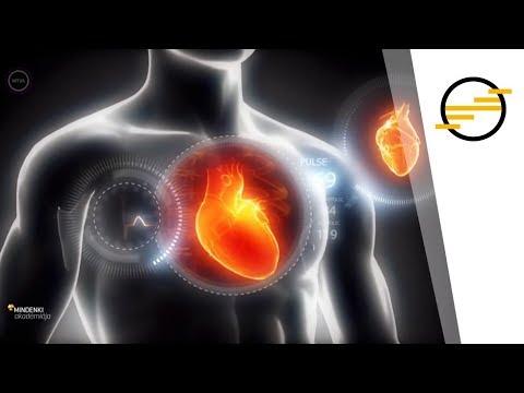 parazitákból származó magas vérnyomás