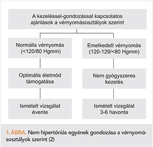 2 fokozatú magas vérnyomás 2 kockázati tényező)