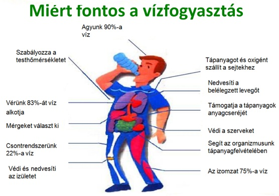milyen vizet kell inni magas vérnyomás esetén fa tetvek magas vérnyomás kezelése
